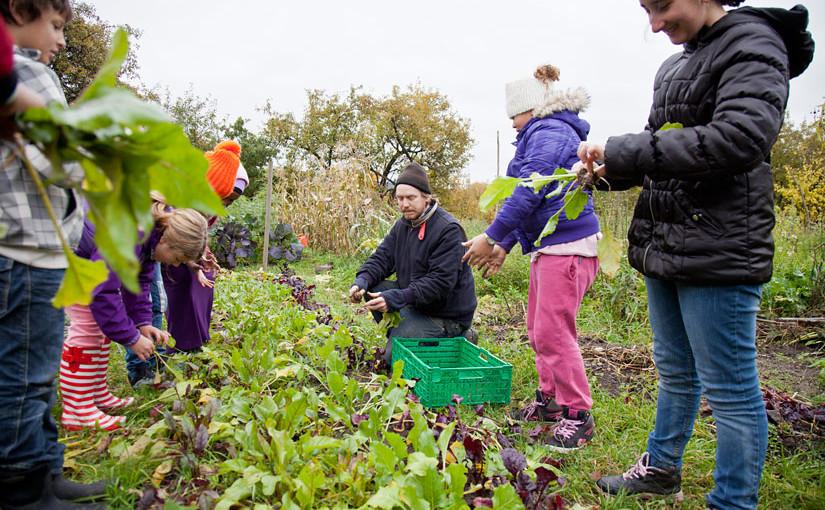 Dyrkeglede i skolehagen. Foto: Erik Røed.