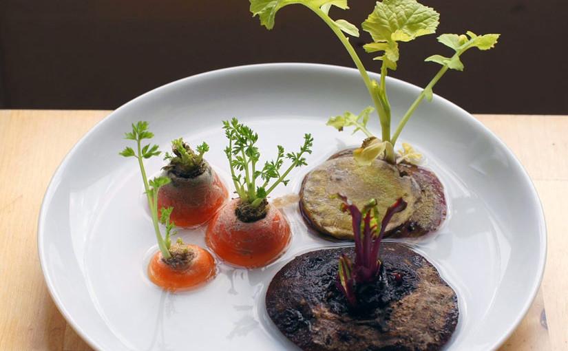 Dyrk mat av grønnsaksrestene