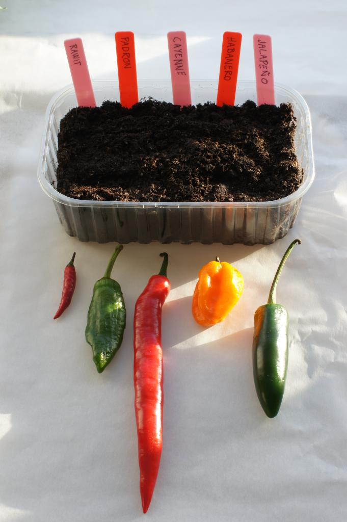 Ulike sorter chili